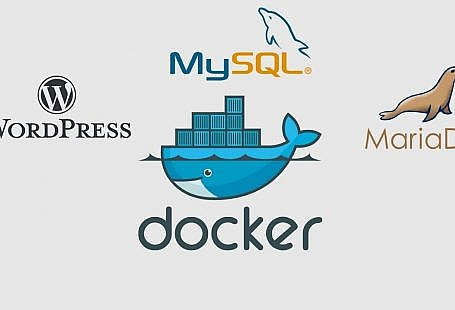 config docker tren wordpress